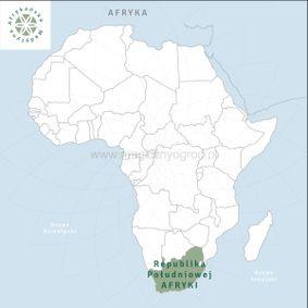 Afrykański korzeń snów
