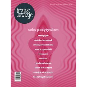 Trans/wizje nr 6