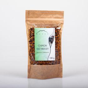 Chaga - guz brzozy